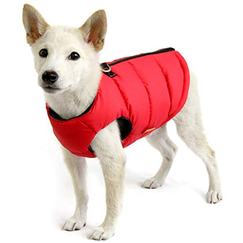 Gooby Padded Dog Vest - Solid Red, Medium - Zip Up Dog Jacket Coat with D Ring Leash - Small Dog Sweater with Zipper Closure - Dog Clothes for Small Dogs Girl or Boy for Indoor and Outdoor Use