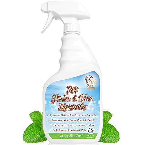 Pet Stain & Odor Miracle - Enzyme Cleaner for Dog and Cat Urine, Feces, Vomit, Drool