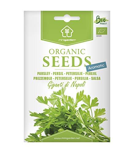 Italienische Petersilie, zertifizierte biologische Samen von Minigarden, enthält zwischen 3000 und 3600 Samen