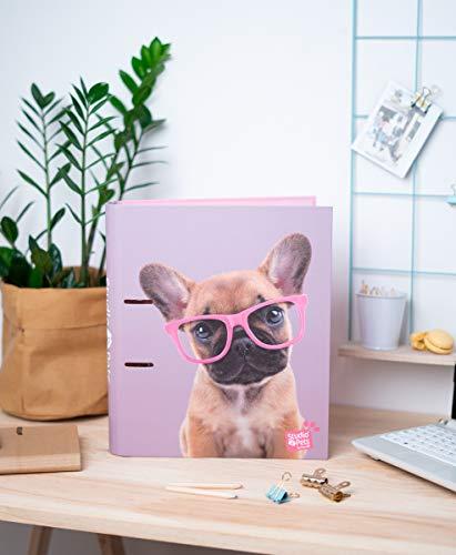 Grupo Erik C2AT0013- Carpeta 2 anillas troquelada premium Studios Pets Dogs 2019, 32x26 cm : La carpeta 2 anillas Studio Pets Dogs es la mejor forma para organizar cualquier documento, apunte o nota y tenerlo siempre a mano cuando lo necesites. Carpeta A4 con unas medidas de 32 x 26 cm, sistema de cierre con 2 anillas de 35 mm, incorpora varilla compresora metálica y cierre con banda elástica a color acorde al diseño. Nuestro archivador 2 anillas está fabricado con materiales de alta calidad, las tapas son de cartón rígido de 2 mm de espesor y está forrado con papel de 15 gr en mate.