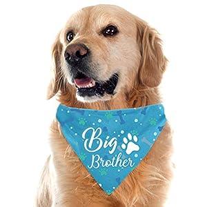 Yangmics Direct Big Brother Blue Dog Bandanas