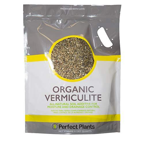 buy Vermiculite