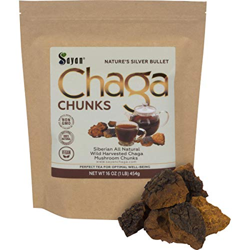 Sayan Siberian Pure Raw Chaga Mushroom Chunks with Black Top Crust 1 Lb / 454 g - Premium Wild Forest Harvested Super Antioxidant Tea, Supports Immune System, Heart & Liver Health