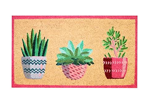 Felpudo de Coco Natural, felpudos Entrada casa, Alfombra Limpia Zapatos, Felpudo Exterior, Alfombra Entrada casa Interior, felpudos Originales y Divertidos, 40x70 (Plantas)