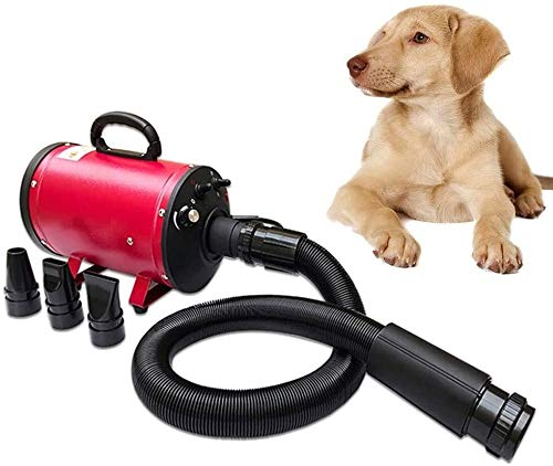 Secador de pelo de perro grande de aire del ventilador sin escalonamiento velocidad cambio de dos velocidades AdjustmentThermal aislamiento y el silencio aptas for el baño y arreglo de los perros gran