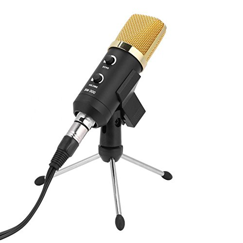 Dilwe Reverb Micrófono USB, Mini Portátil Volumen Eco Micrófono Ajustable con Soporte para Karaoke, Música de Fiesta Tocando y Cantando, Transmisión en Vivo(Oro)