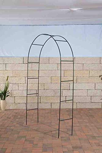 CLP Arco para Jardín Ladder De Metal I Arco para Flores con 230 cm De Altura I Soporte para Plantas Trepadoras I Arco para Trepadoras I, Color:Verde Claro