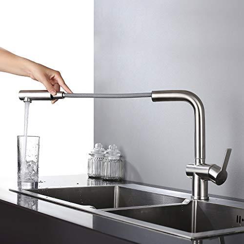 HOMELODY Ausziehbar Küchenarmatur Wasserhahn Küche Armatur Spültischarmatur Mischbatterie für Spüle