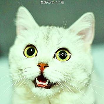 音楽-かわいい猫