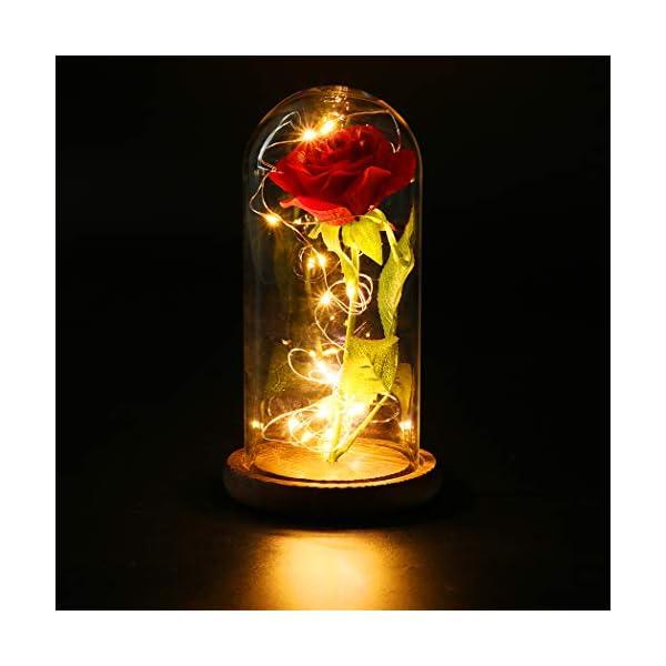 FunPa Rosa Eterna Roja, Rosas La Bella y la Bestia Rosa de Seda Roja y luz LED Flor en Cúpula Vidrio con Pedestal de…