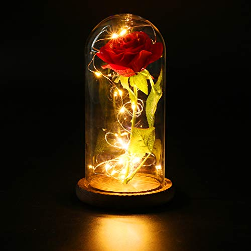 FunPa Rose in glas, eeuwige roos in glas mooi en het best LED kunstroos bloemen geconserveerde roos LED lichtsnoer romantisch cadeau voor verjaardag trouwdag huis Kerstmis decoratie Brown Base Beauty and the Beast Rose.