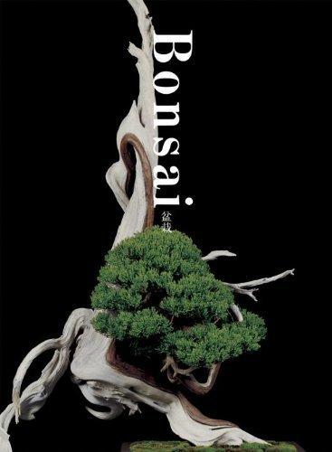 Bonsai by Kunio Kobayashi (2011-10-11)