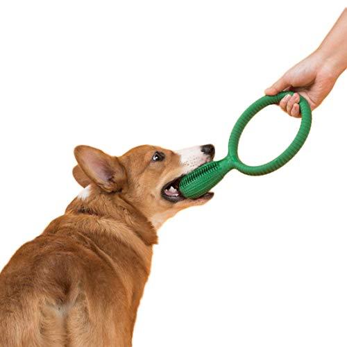 Wwjpet Cepillo De Dientes Stick Perro Limpieza De Dientes Stick Dental para Perros como Un Juguete para Masticar para Perros Stick para Cepillar