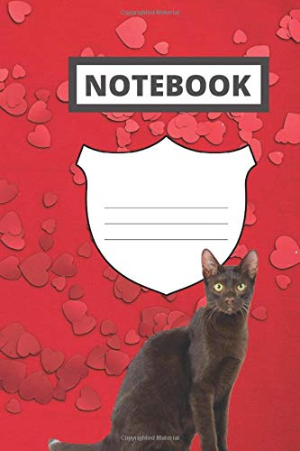 Notebook: Havana brown composition notebook | 6 x 9 | 120 pages