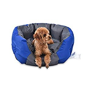 Amazon Basics Water-Resistant Pet Bed for Small Dogs, Oval, Royal Blue, 26.8-Inch