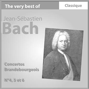 Bach : Concertos Brandebourgeois No. 4, 5 & 6