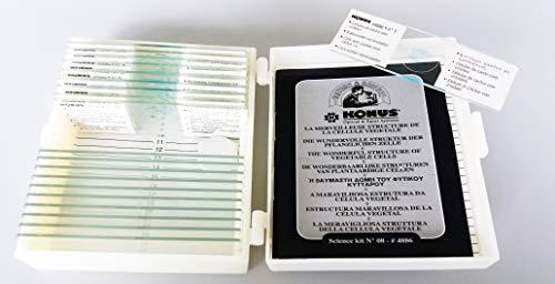 Konus Voorbereiding Set - Structuur van Groenten (Pack van 10)
