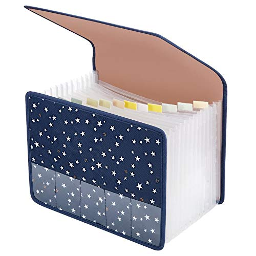 Expanding File Folder Document Organizer Expandable Filing Folders A4 Accordion with Cover 13 Pockets Expander Storage for Office/Business/School/Family Bill Paperwork