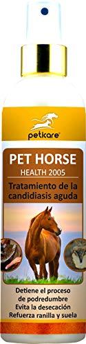 Peticare Caballo Bio Spray contra Candidiasis en Pezuñas - Tratamiento Especial para Cascos, Detiene Proceso Podredumbre, Espray y Material de Cuidado 100% Organico - petHorse Health 2005 (250 ml)