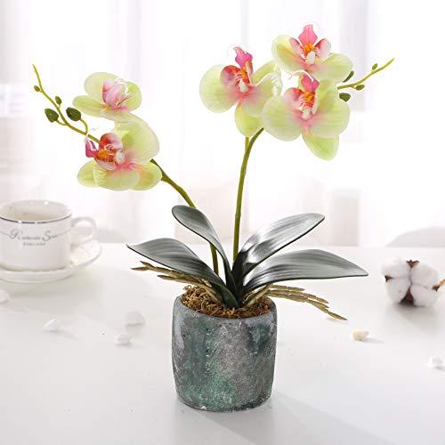 Asvert Phalaenopsis Bonsai de orquídeas con Flores Artificiales con jarrón de cerámica Decoración para el Centro de Mesa del Banquete de Boda(Verde)