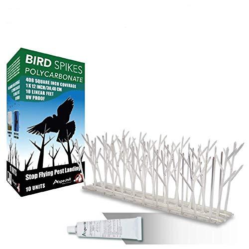 Aspectek Plastic Polycarbonate Bird Spikes Kit with Adhesive Glue, Covers 10 Feet