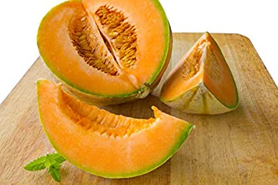Planters Jumbo Cantaloupe Seeds - Non-GMO - 3 Grams, Approximately 105 Seeds