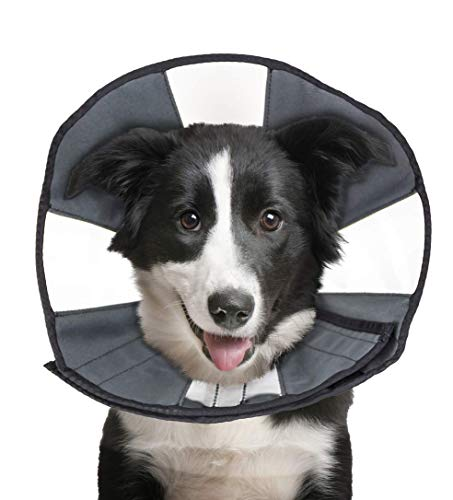 ZenPet Pet Recovery Cone E-Collar for Dogs and Cats - Always Use with Your Pet's Everyday Collar - Comfortable Soft Collar is Adjustable for a Secure and Custom Fit (Large)