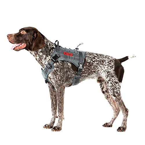 OneTigris Taktische Hundeweste Service Hundegeschirr MOLLE Hundeausbildung Geschirr 1000D Nylon (M, Grau)
