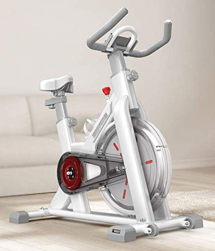 Bicicleta Fitness de Gimnasio Ejercicio con Volante de Inerc