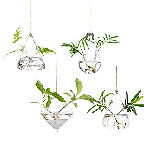 Macetas Colgantes Grandes De Vidrio 4 Unids/Set con Cuerdas Cuerda 2 Agujeros Recipientes Suculentos Terrario para Jardín De Casa