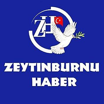 Zeytinburnu Haber (2013 Edition)