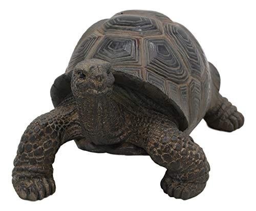 Ebros Lifelike Galapagos Tortoise Statue 6.5' Wide...