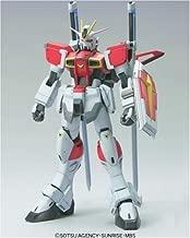 Gunseed Destiny 1/100 Sword Impulse Gundam Gg