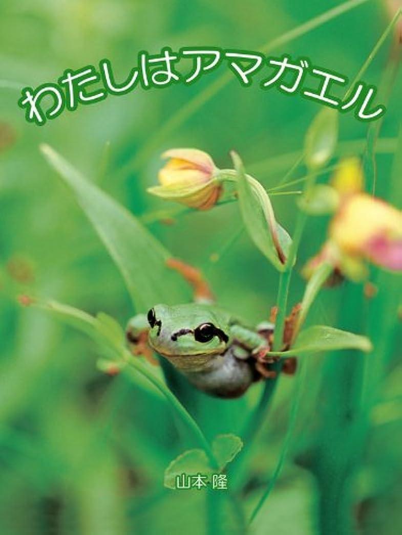 腹置換まもなくわたしはアマガエル seiseisha mini book series