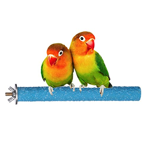 yoyoung Bird Perch Rough-surfaced Nature Wood Stand Branch Toy for Parrots