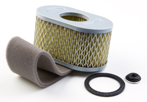 Briggs & Stratton 797033 Air Cleaner Cartridge Filter Replaces 798504