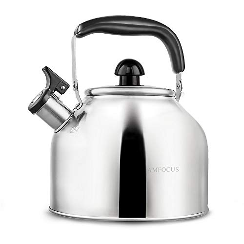 Whistling Tea Kettle Stove TopTeapot, Stainless Steel Teakettle with Fast Boiling Base (3.9Q)