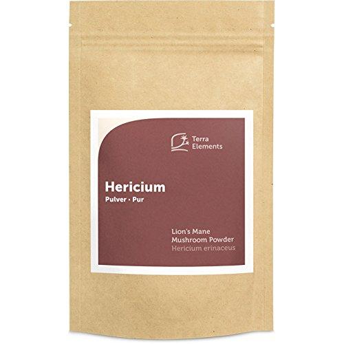 Terra Elements Bio Hericium Pulver 100 g I Igel-Stachelbart I Lion's Mane I 100% rein I Vegan I Rohkost