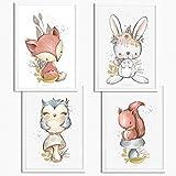 Sunnywall® 4er Set Eichhörnchen Hase Fuchs Eule Waldtiere