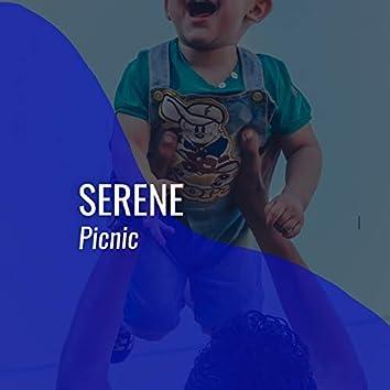 # 1 Album: Serene Picnic