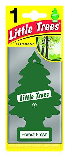 Little Trees MTR00 - Ambientador