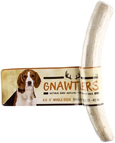 Pet Parents Gnawtlers - Premium Deer Antlers...