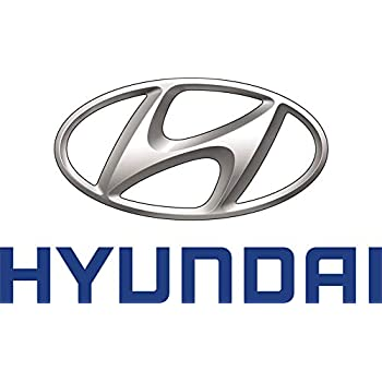 Genuine Hyundai 31111-1G500 Fuel Pump