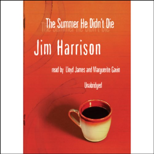 The Summer He Didn't Die audiobook cover art