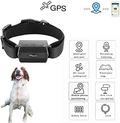 Zeerkeers Rastreador GPS para Perros y Gatos,Zeekeer