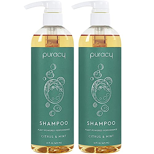 Puracy Natural Daily Shampoo, No Sulfate Formula, All Hair Types, 16 Ounce (2-Pack)