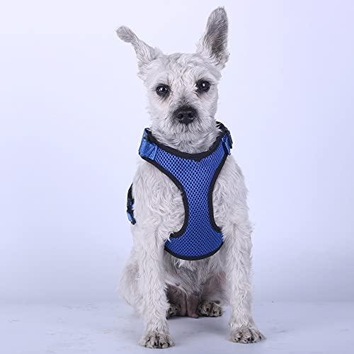 Arnés para perros Pet Dog Harness Summer Mesh Nylon Breathable Dog Vest Soft Adjustable Harness for Dogs Puppy Collar Cat Pet Dog Chest Strap Arnés para gatos (Color : Blue, Size : Large)