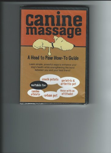 Canine Massage – a Head to Paw How-to Guide