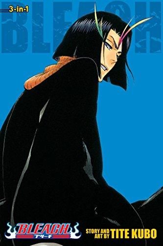 Bleach (3-in-1 Edition), Vol. 13