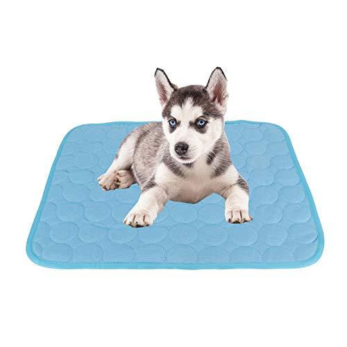 Hond Koeling Mat Huisdier Koeling Mat Zelf Koelen Huisdier Hond Kat Koeling Pad Bed Matrassen voor Honden Katten in de zomer, L